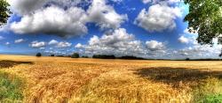 Klare Felder Luft-Panorama